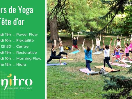 Où pratiquer des cours de Yoga à Lyon ? Au parc de la Tête d'or!