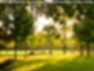 activites-sport-exterieur-parc-nature-ly