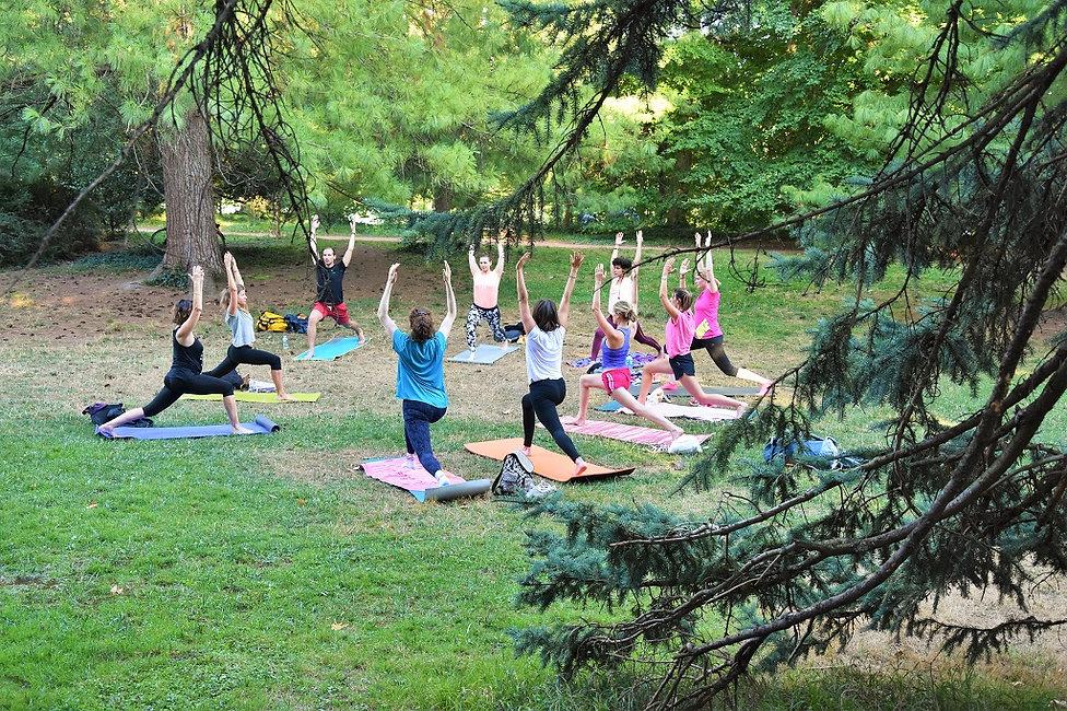 cours_de_yoga_a_lyon_hatha_vinyasa_nidra