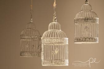 Harry Potter theme Bat Mitzvah celebration hanging bird cages.jpg