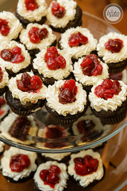 Chocolate Forest Cupcakes