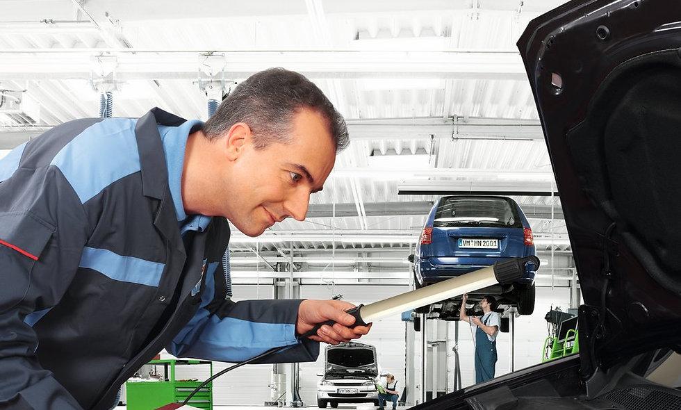 MFK Check, Überprüfung zwecks Motorfahrzeugkontrolle