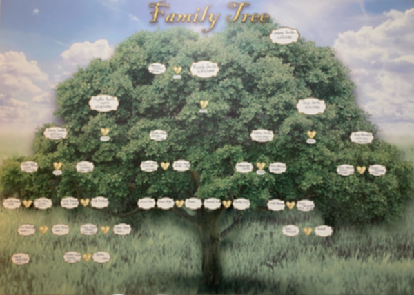 build family tree