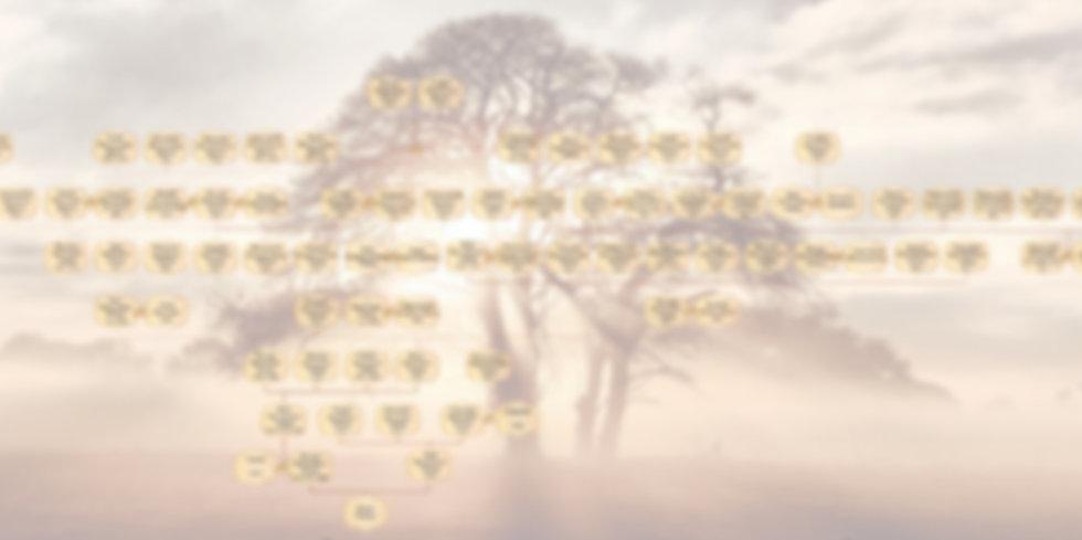 DRAGA_TREE_10%2520generations_edited_edited.jpg