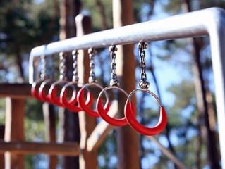 О новых стандартах на гимнастическое оборудование