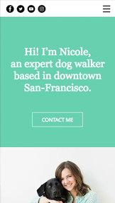 Pets & Animals website templates – Dog Walker