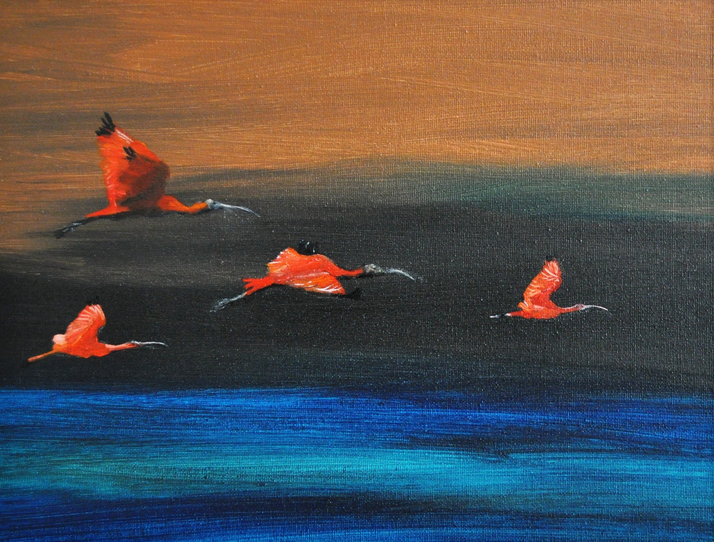 ibissen in vlucht
