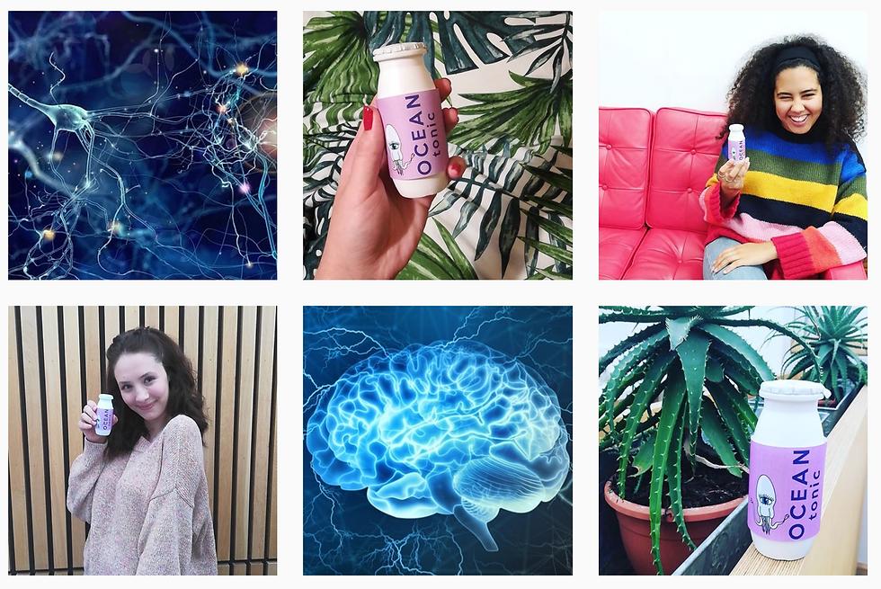 Ocean Instagram.png