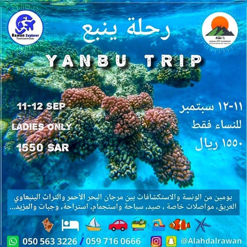 Yanbu  Beach  Trip