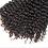 Thumbnail: Raw Indian Curly Bundle