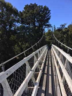bridge-blue