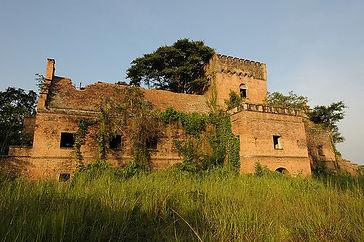 DRCongo_landscape5.jpg