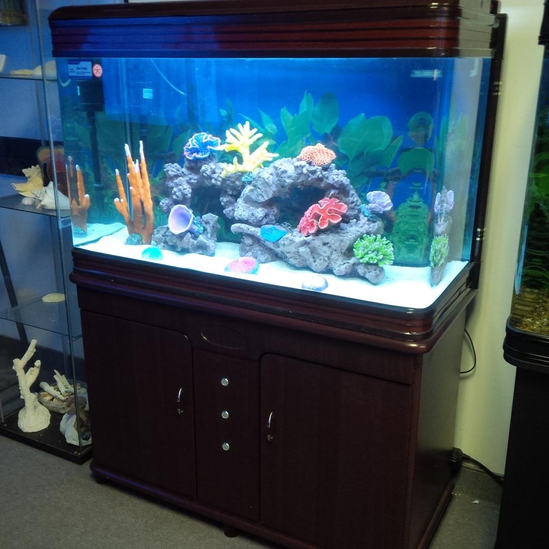 Curved Corner Aquarium