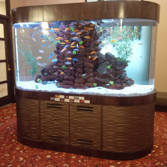 Double Bullnose Acrylic Aquarium
