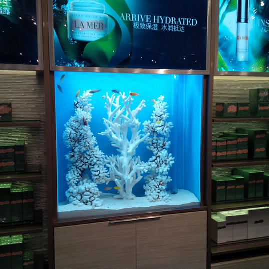 Freshwater Aquarium with White Coral