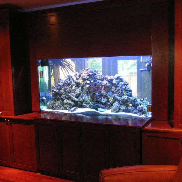 Custom 2 Sided Reef Tank Toronto