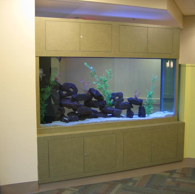 African Cichlid Aquarium with Custom Cabinets