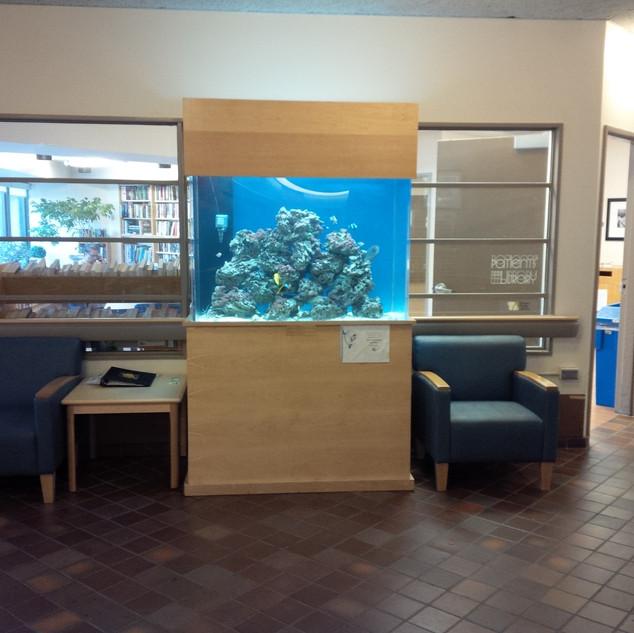 Custom Aquarium Toronto