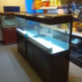 Aquarium Sale Toronto