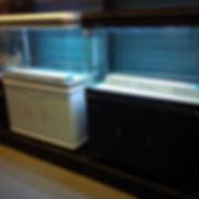 Aquarium sale