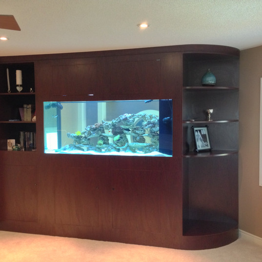 Aquarium Service Richmond Hill