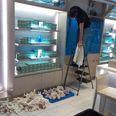 Aquarium service toronto
