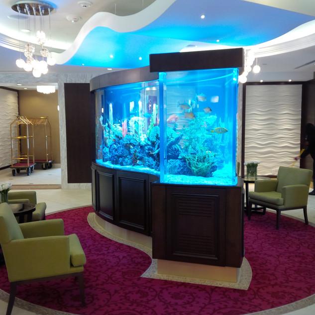 1000 Gallon Wave Acrylic Aquarium