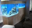 North York Aquarium Service