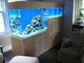 North York Aquarium Service