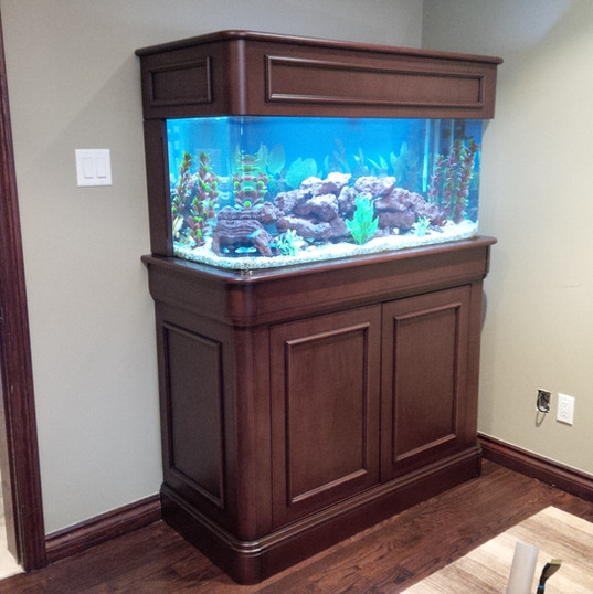 Fish Tank Cleaning Toronto
