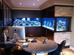 1000 Gallon L-Shaped Aquarium