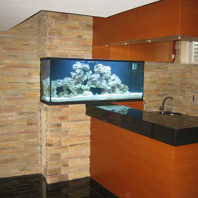 Custom Basement Wall Aquarium