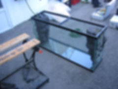 Custom freshwater aquariums toronto