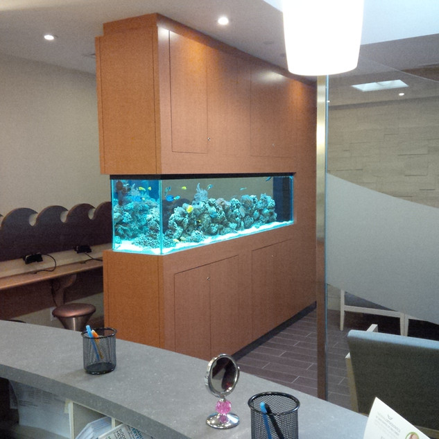 10 Foot Long Custom Saltwater Fish Tank