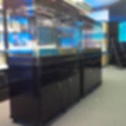 Curved glass aquariums