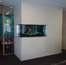 Custom Wall Aquarium Toronto