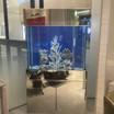 Pickering Aquarium Service