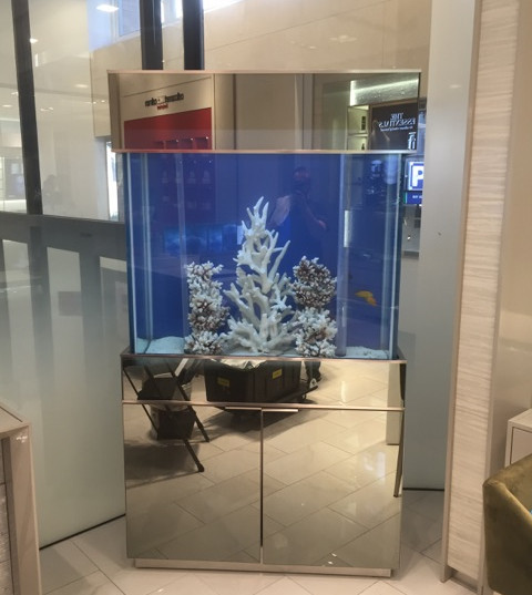 Pickering Aquarium Service