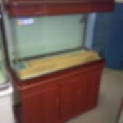 Fish tank sale toronto