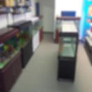 Discounted aquariums