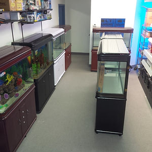Discounted aquariums