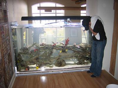 Custom Acrylic Aquariums Toronto