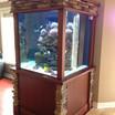 Aquarium Service GTA