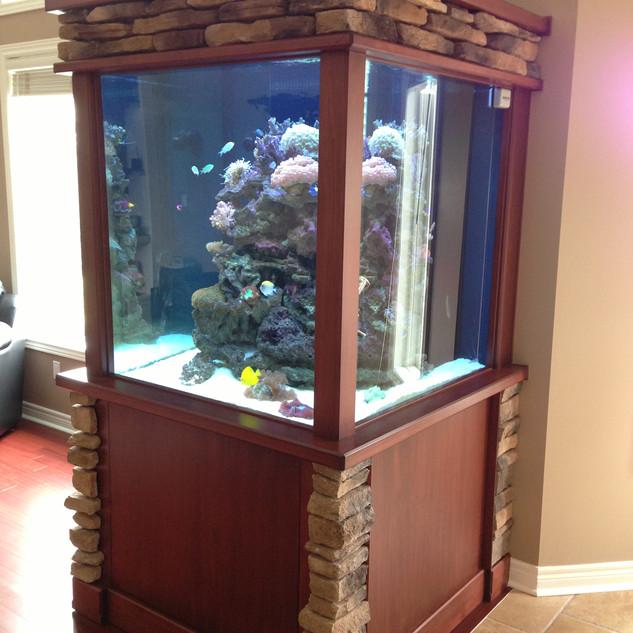 Tall Custom Glass Reef Aquarium