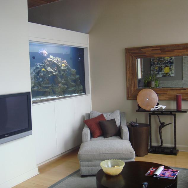 Large Acylic Condo Aquarium Toronto