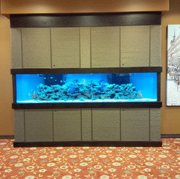 11 Foot Long Custom Reef Tank