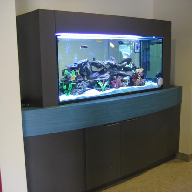 Custom Aquarium Cabinets