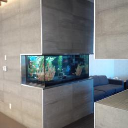 Freshwater Aquarium Toronto