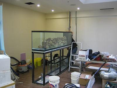 Aquarium Services Toronto