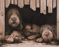 Anna og hundene